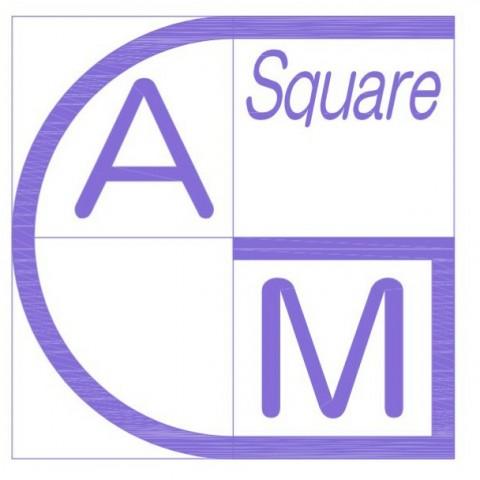 GAM-square